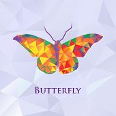 Vector butterfly color geometric.
