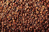 Coffee beans 4
