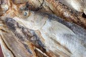 Dry Salted Mullet