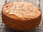 Rustic Swedish Almond Cake