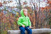 Autumn portrait of a cute toddler boy in forest