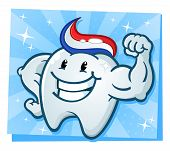 pic of molar  - A powerful strong molar cartoon character flexing his bulging muscles and showing off his tooth paste hairdo - JPG