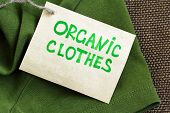 green shirt made of natural fabrics with organic clothes label