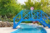 Footbridge In The Summer Park