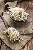 stock photo of soybean sprouts  - Mungbean Sprouts  - JPG