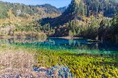Magnificent View In Jiuzhaigou National Park