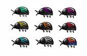 Set Of Beetles