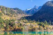 Magnificent View In Jiuzhaigou National Park