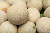 picture of muskmelon  - pile of cantaloupe fruit for sale in the market - JPG