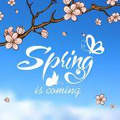 Typographic Design. Lettering Spring design on blurred backgroun