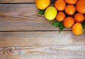Citrus Fruits - Orange, Lemon, Tangerine