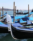 Moored Gondolas Near St. Mark's Square