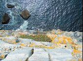 stock photo of irish moss  - view straight down a 300 foot cliff in dun aengosa aran islands ireland - JPG