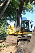 stock photo of vegetation  - The claw of a frontloader devestates the vegetation growing in a residential neighborhood - JPG