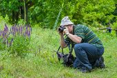 stock photo of enthusiastic  - Enthusiastic mature photographer taking a photo of wild butterfly - JPG