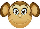 picture of face painting  - Smiling monkey face - JPG