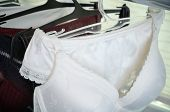 stock photo of silk lingerie  - white black and vinous lace lingerie hanging on the hanger close up - JPG