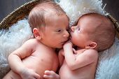 picture of twin baby girls  - Boy and girl twins lying down together - JPG
