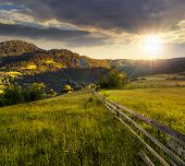 picture of conifers  - composite rural landscape - JPG
