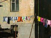 Dia de lavagem