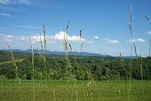 Blueridge Mountain Valley