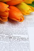 foto of risen  - Open Bible with selective focus on the text in Matthew 28 about Jesus - JPG