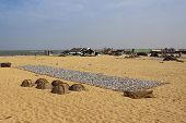 Negombo Beach Scene