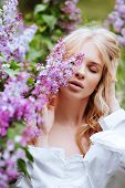Young Charming Beautiful Blonde Girl. Spring Blossom Lilac Bush. Portrait Of A Girl Blondes. poster