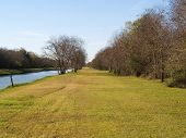 The Green Levee