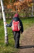 A Boy With A Backpack In The Autumn City Park