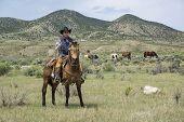 Cowboy Wrangler Wrangler Riding Buckskin Horse Watching Over Horse Herd With Rope Black Cowboy Hat B poster