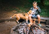 Give Me These Last Piece, Please! Boy With Beagle Dog Have A Picnic Near Campfire poster
