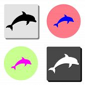 Dolphin Aquatic Mammal. Simple Flat Vector Icon Illustration On Four Different Color Backgrounds poster