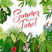 Summer Time Season Poster With Tropical Flower And Exotic Palm Leaf. Summer Holidays And Tropical Be poster