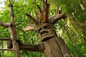 pic of woodcarving  - Pagan wooden idol in a woods - JPG