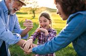 A Happy Small Girl With Her Senior Grandparents Having Fun Outside. Sunset In Spring Nature. poster