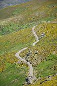 Small Rural Road At Gredos Mountains