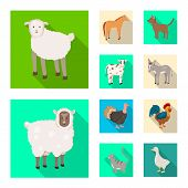 Isolated Object Of Breeding And Kitchen Symbol. Set Of Breeding And Organic Stock Symbol For Web. poster
