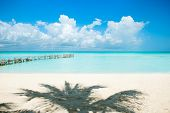Beach. Caribbean Beach.Mexico.Paradise Island.Vacation and Tourism concept.