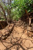 Narrow Pathway In Konso, Walled Village Tribes Konso. Africa, Ethiopia. Konso Villages Are Listed As poster