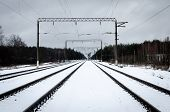 Railroad Tracks In Winter. The Image Of A Winter View Of The Railroad Tracks. Background Of Train Tr poster