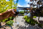 Hand Holding A Glass Of Red Wine Selective Focus View, Outdoor Wine Tasting, Wineries And Vineyards  poster