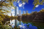 Osaka Garden Jackson Park Chicago