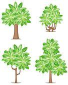 Quatro ícones de árvore