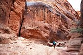 stock photo of buckskin  - A backpacker hikes through Buckskin Gulch in southern Utah - JPG