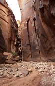 foto of buckskin  - Beautiful sandstone wall of Buckskin Gulch Utah - JPG