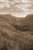 image of long winding road  - sepia long grass and winding road with mountains in county Donegal Ireland - JPG