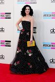 LOS ANGELES - NOV 24:  Katy Perry at the 2013 American Music Awards Arrivals at Nokia Theater on Nov
