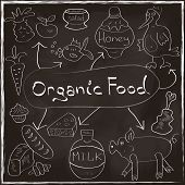 Organic Food Concept Set With Homemade Products Hand Drawn On Blackboard Trendy Style In Vector