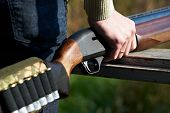 stock photo of shotgun  - Shotgun with cartridges in hand hunter outdoors - JPG